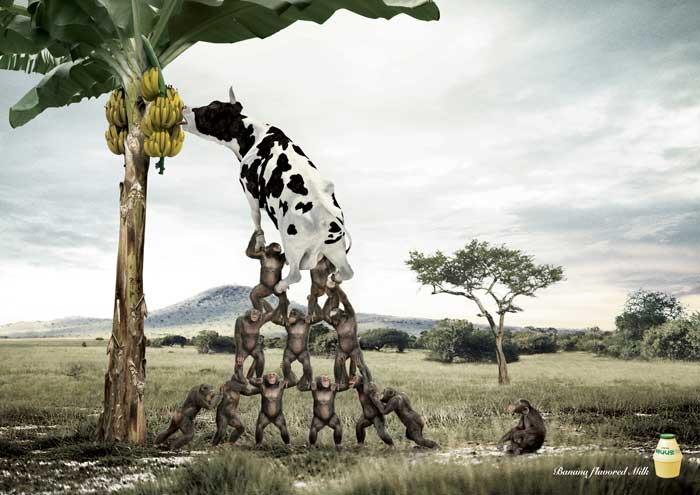 banana_grassland